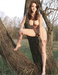 Fascinating busty teen peach undressing and spreading her long slender legs on the logs.
